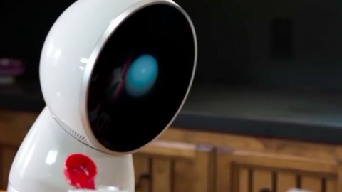 The True Utility of Echo and Jibo