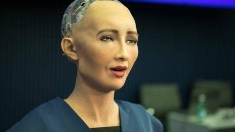 Lifelike Robot Granted Citizenship