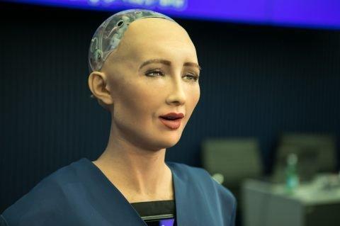 Lifelike Robot Granted Citizenship